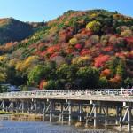 [関西]秋の紅葉スポット!