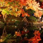秋に行きたい鎌倉の紅葉デート!