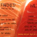 食べちゃダメ!?ピンクのサーモン(ノルウェー産)は超危険な有害養殖魚!