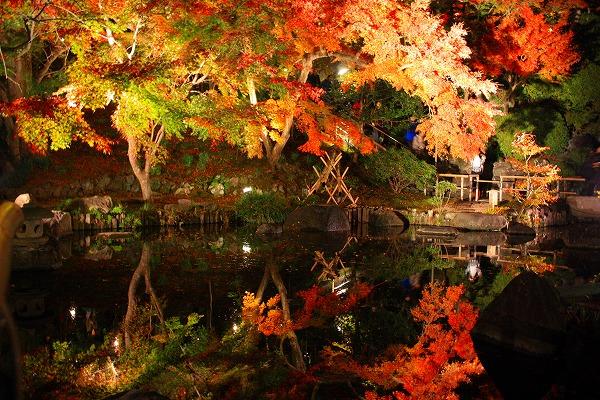 鎌倉の長谷寺の紅葉